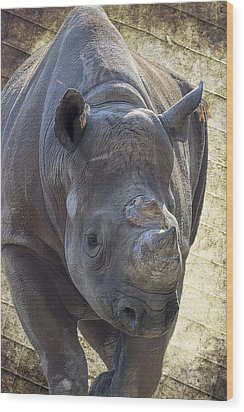 Lurching Rhino Wood Print by Bill Tiepelman