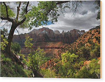 Wood Print featuring the photograph Luscious View by Barbara Manis