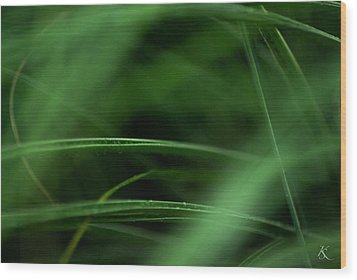 Lush Escapes Wood Print