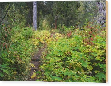 Lush Wood Print