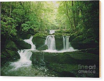 Lynn Camp Cascades Wood Print