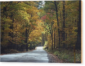 Lynn Run Pa Wood Print by Denise Moore