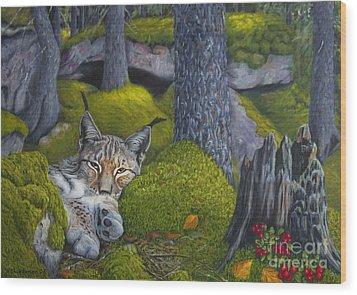 Lynx In The Sun Wood Print by Veikko Suikkanen