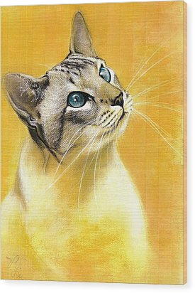 Lynx Point Siamese Wood Print