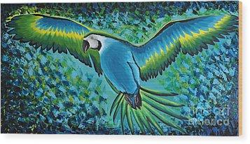 Macaw In Flight Wood Print