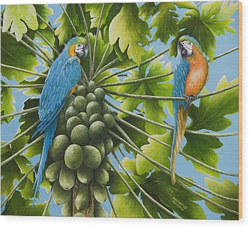 Macaw Parrots In Papaya Tree Wood Print