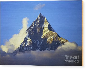 Wood Print featuring the photograph Machapuchare - Sacred Mountain by Jacqi Elmslie