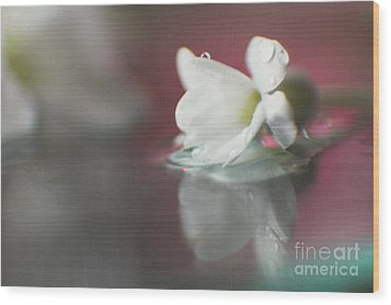 Wood Print featuring the photograph Macro Wild Floral Textured by Eden Baed