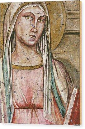 Madonna Del Parto - Study No. 1 Wood Print by Steve Bogdanoff