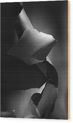 Madrona Bark Black And White Wood Print