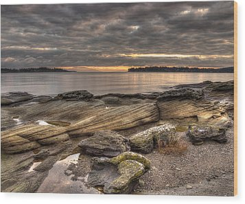 Madrona Point Wood Print by Randy Hall
