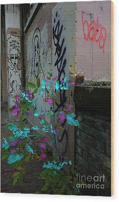 Magenta Cyan And Babs Wood Print by Jacqueline Athmann