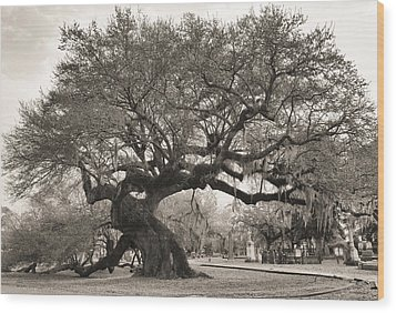 Wood Print featuring the photograph Magestic And Aged by Phyllis Peterson