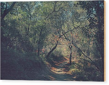 Magic Awaits Us Wood Print by Laurie Search