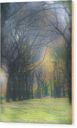 Magic. Here. In Nyc Wood Print