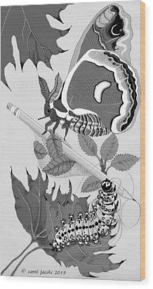 Magic Pencil Wood Print by Carol Jacobs
