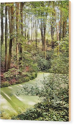 Magic World Of Botanic Gardens Wood Print