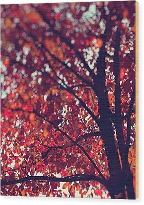 Magical Autumn Wood Print by Kim Fearheiley