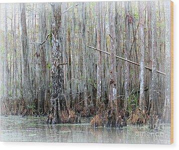 Magical Bayou Wood Print by Carol Groenen