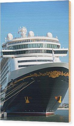 Magical Cruise Wood Print