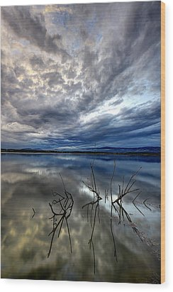 Magical Lake - Vertical Wood Print