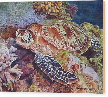 Magical Sea Turtle Wood Print by Sharon Farber