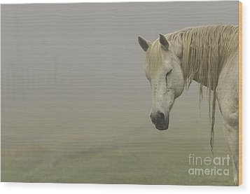 Magical White Horse Wood Print by Cindy Bryant