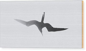 Wood Print featuring the photograph Magnificant by Peg Urban