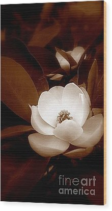 New Orleans Magnolia Beauty Wood Print