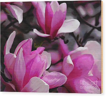 Magnolia Blossoms Wood Print