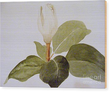Wood Print featuring the painting Magnolia Bud II by Nancy Kane Chapman