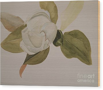 Wood Print featuring the painting Magnolia California by Nancy Kane Chapman