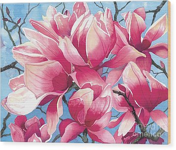 Magnolia Medley Wood Print by Barbara Jewell