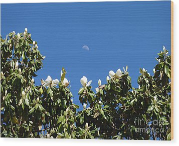 Magnolia Moon Wood Print by Meghan at FireBonnet Art
