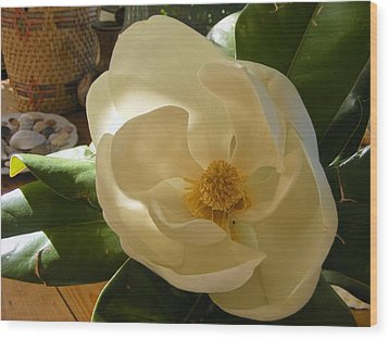 Wood Print featuring the photograph Magnolia by Nancy Kane Chapman