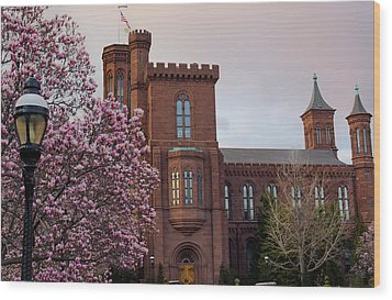 Magnolias Near The Castle Wood Print by Andrew Pacheco