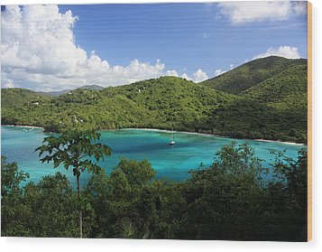 Maho Bay Wood Print by Heather Green