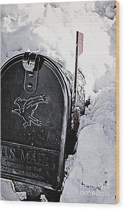 Mailbox Buried In Snow Wood Print by Birgit Tyrrell