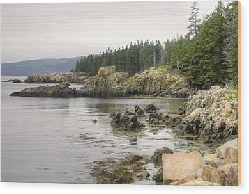 Maine's Beautiful Rocky Shore Wood Print by Denyse Duhaime