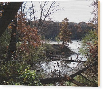 Wood Print featuring the photograph Majestic Fall by J L Zarek