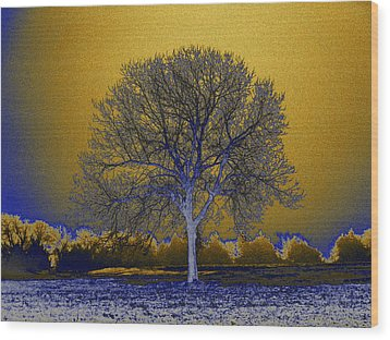 Majestic Gold Wood Print by Diane Miller