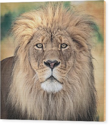 Majestic King Wood Print by Everet Regal
