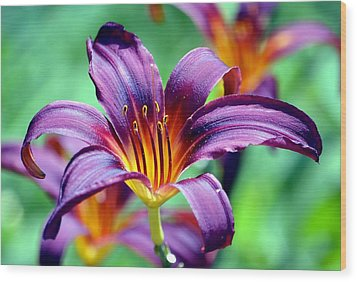 Wood Print featuring the photograph Majesty by Deena Stoddard