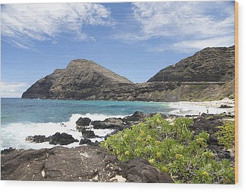 Makapuu Beach Wood Print by Brandon Tabiolo