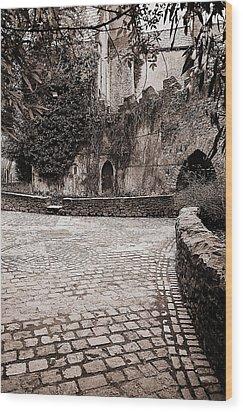 Malahide Castle Grounds Wood Print