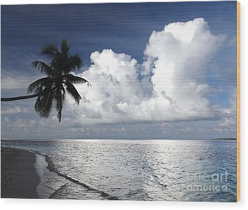 Maldives 01 Wood Print by Giorgio Darrigo