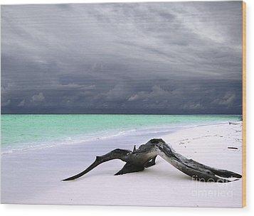 Maldives 02 Wood Print by Giorgio Darrigo