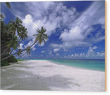 Maldives 03 Wood Print by Giorgio Darrigo