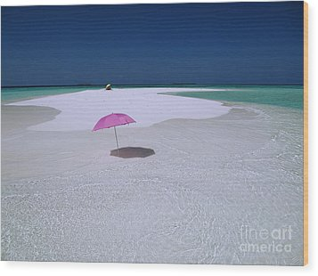 Maldives 04 Wood Print by Giorgio Darrigo