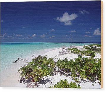 Maldives 07 Wood Print by Giorgio Darrigo